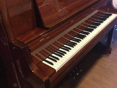 AugustHoffman 131大譜架頂級版(U5款式),少有胡桃木外型,靚聲,保養好少用